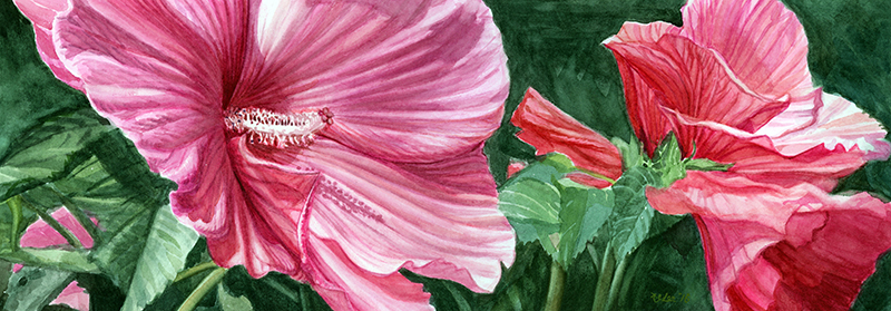 """Summer 2013-1, watercolor on paper, 7""""x19"""""""