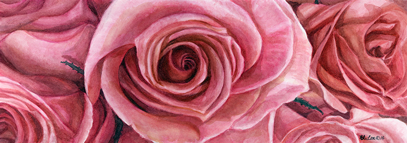 """Rose Pink Rose, watercolor on paper, 7""""x19"""""""